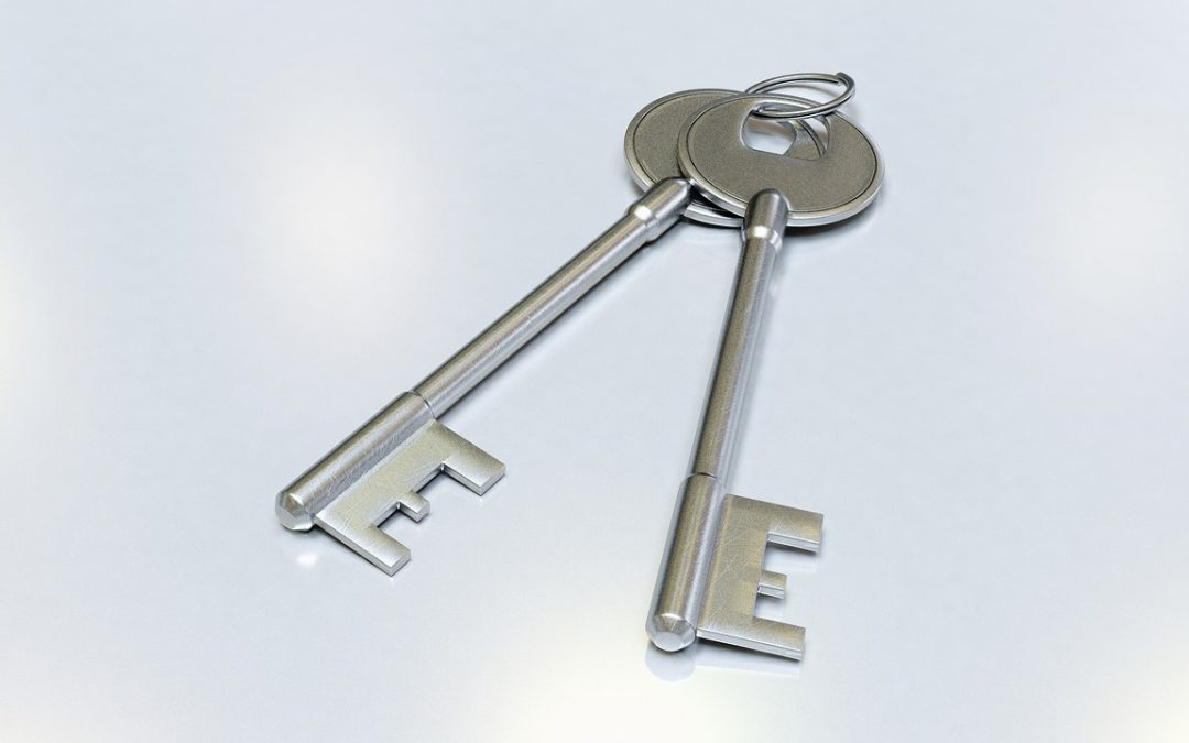 Lost Keys: What to Do and  How to Find Them